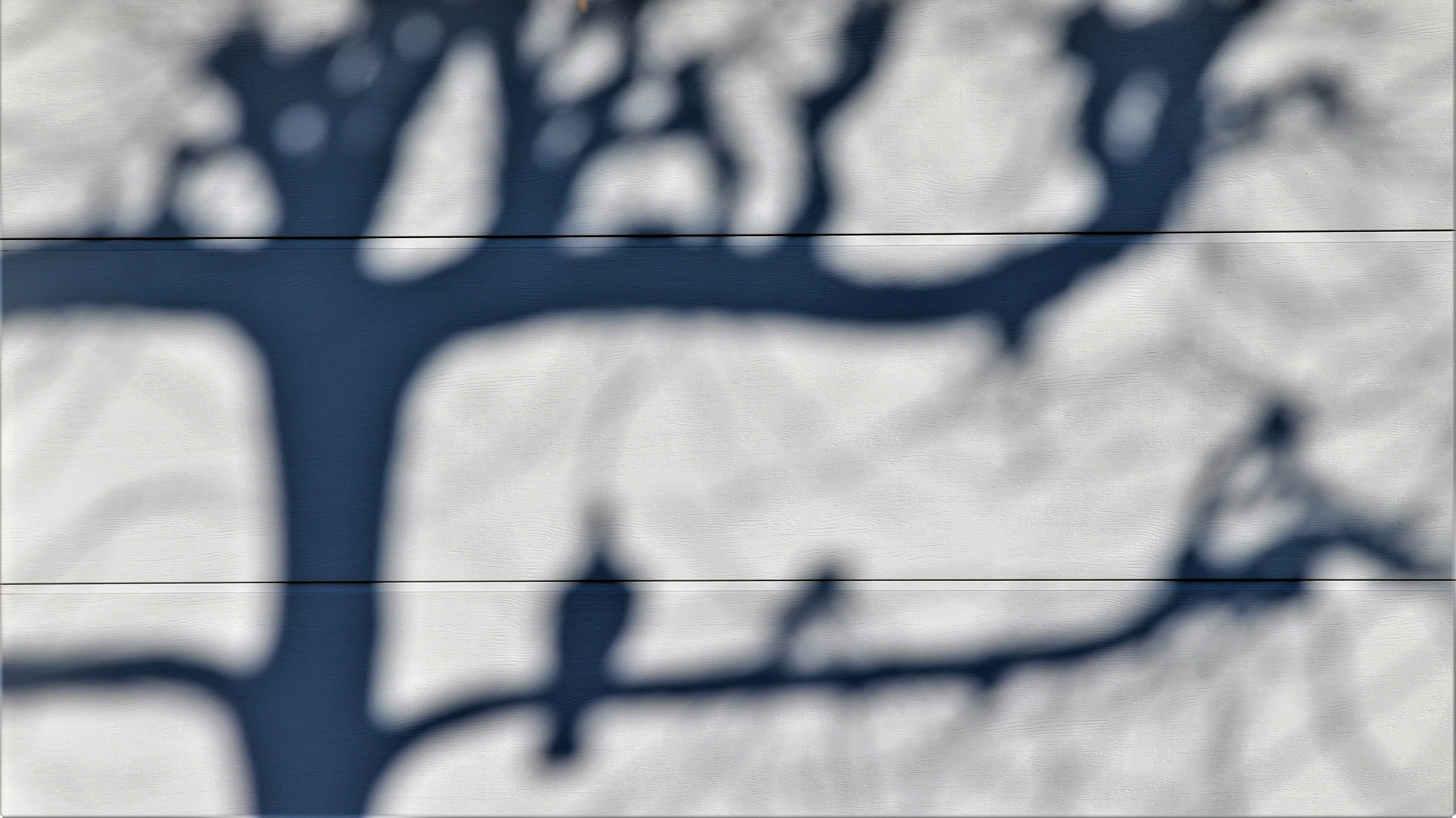Free stock photo of light and shadow