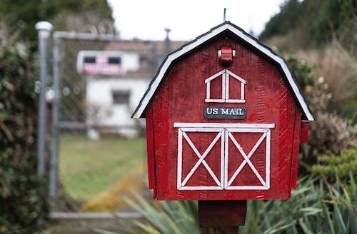Kostnadsfri bild av brevlåda, färg, gräs, närbild