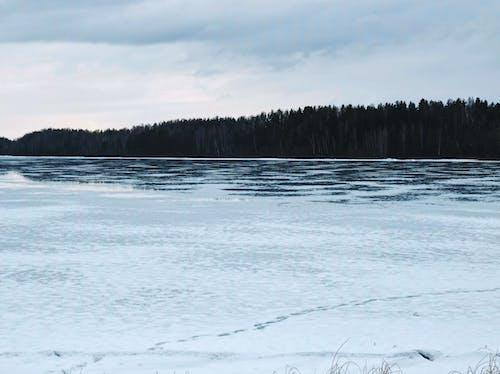 Gratis stockfoto met h2o, ijs, kou, sneeuw