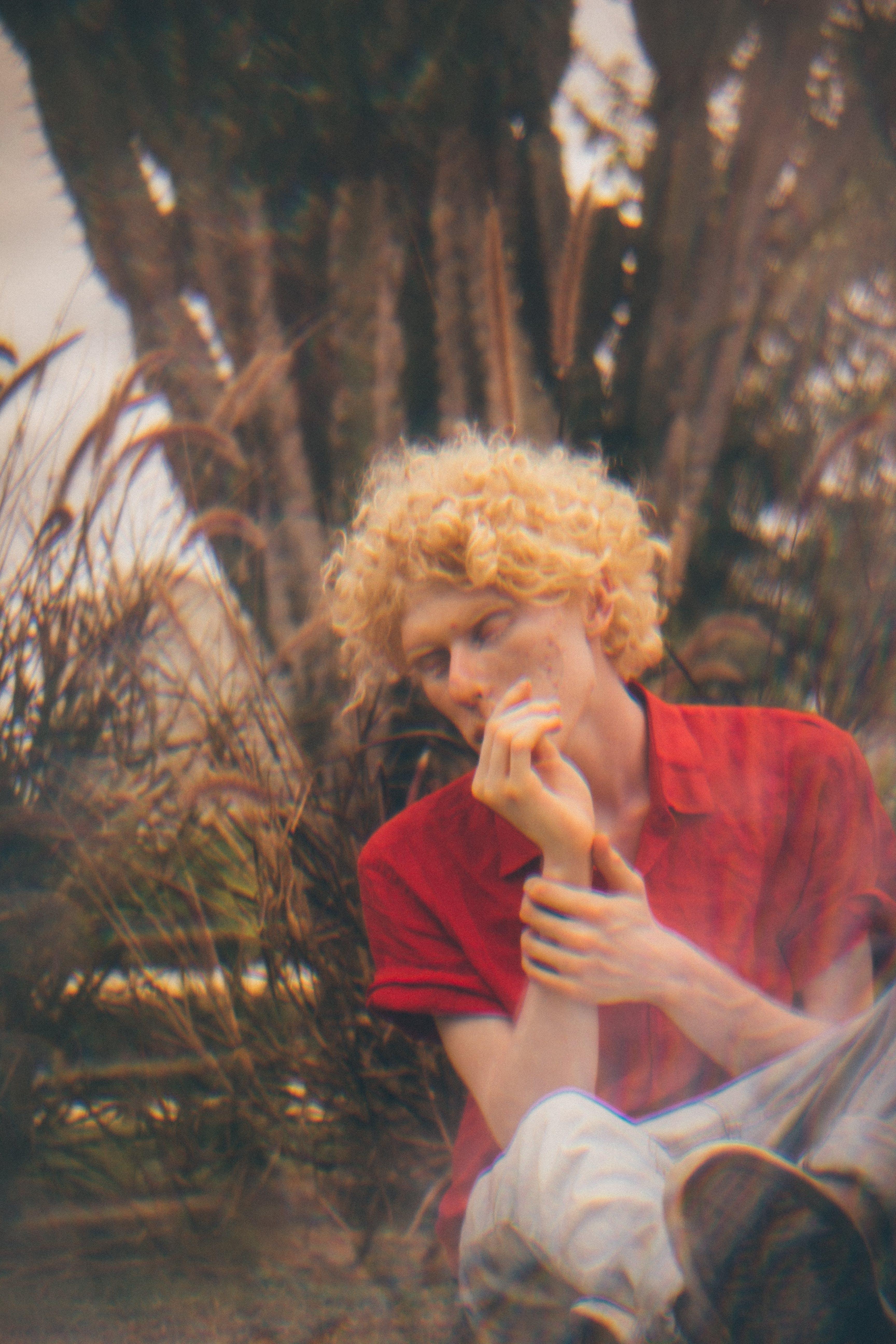 Free stock photo of albino, beautiful, delicate, fashion