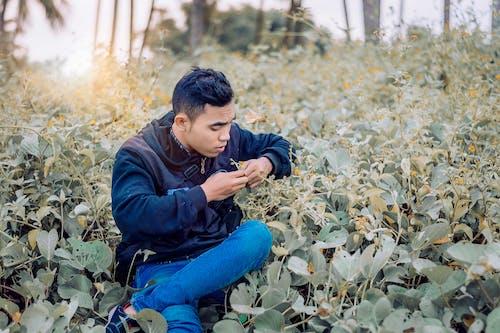Fotobanka sbezplatnými fotkami na tému človek, hracie pole, muž, rastlina