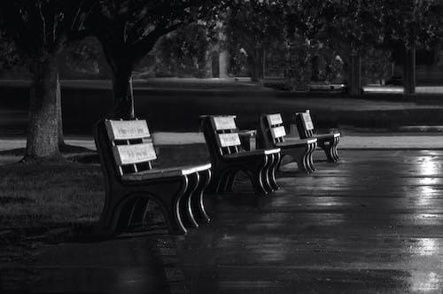 Free stock photo of black-and-white, park bench night art
