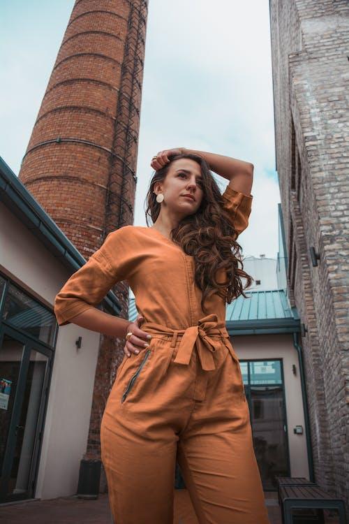 다채로운, 머리, 모델, 시원한의 무료 스톡 사진