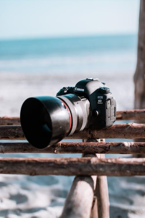 Fotos de stock gratuitas de arena, cámara, Canon, costa