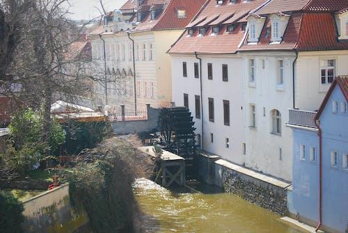 布拉格, 水轮, 老鎮 的 免费素材照片