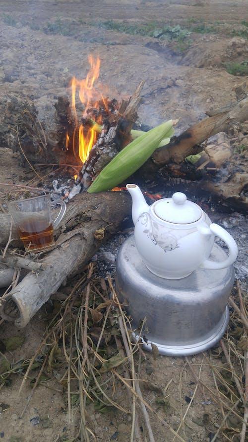 간, 불, 옥수수, 차의 무료 스톡 사진