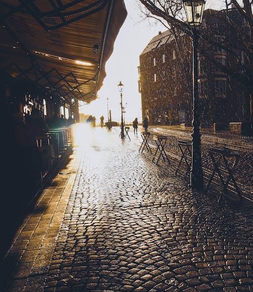Δωρεάν στοκ φωτογραφιών με düsseldorf, ακτίνα ήλιου, απογευματινός ήλιος, βροχή