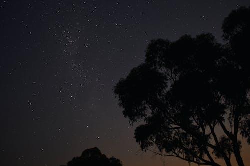 gece, gece gökyüzü, manzara, ünlüler içeren Ücretsiz stok fotoğraf