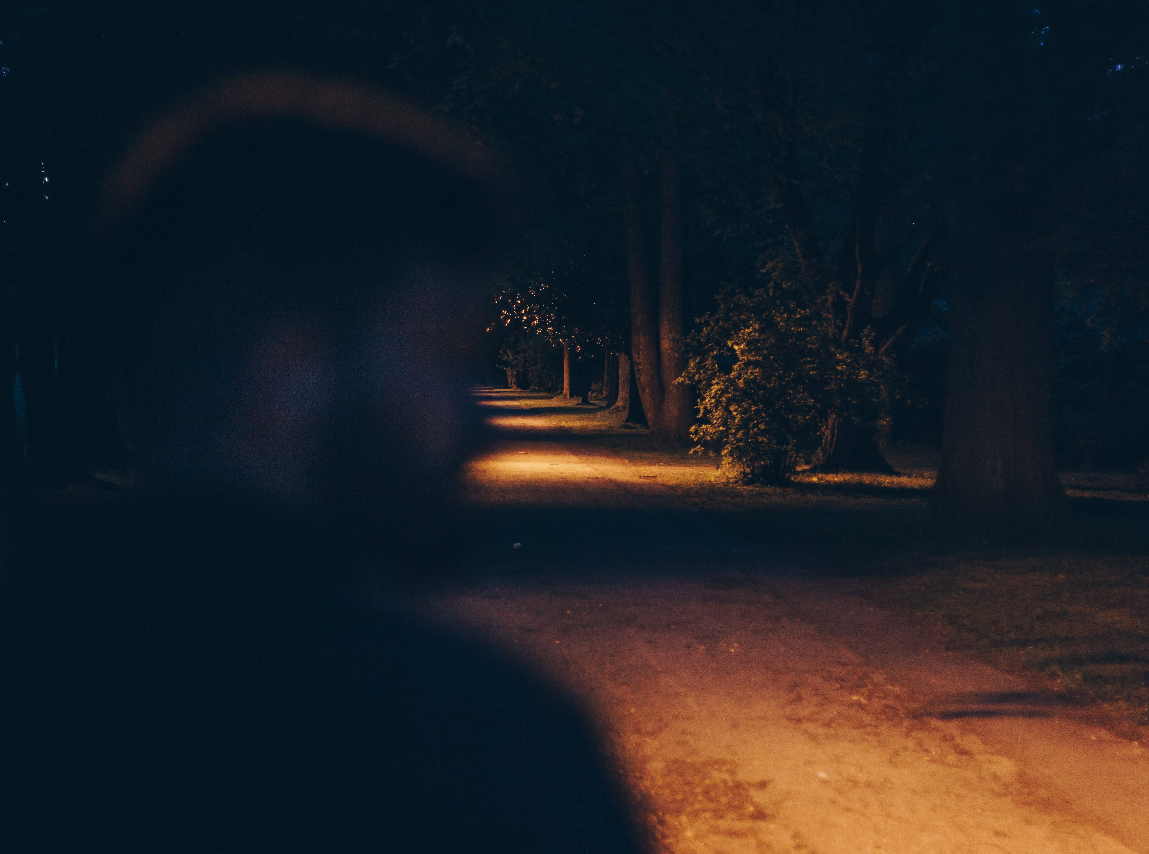 Free stock photo of dark, mood, night, people