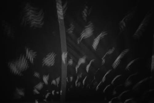 吊燈, 圖案形狀, 天花板燈, 幾何圖案 的 免费素材照片