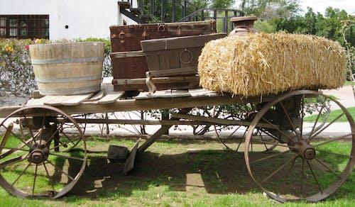 คลังภาพถ่ายฟรี ของ คาวบอย, ทำด้วยไม้, รถบรรทุก, รถบรรทุกไม้