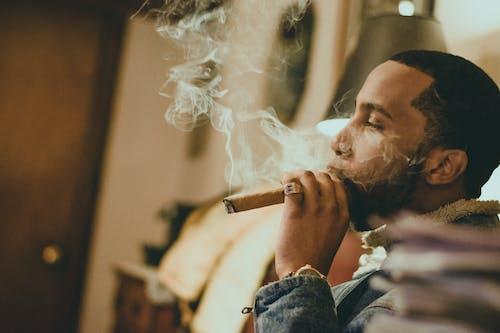 คลังภาพถ่ายฟรี ของ ซิการ์, ผู้ชาย, ผู้สูบบุหรี่