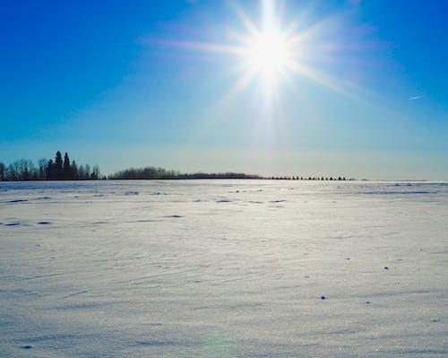 คลังภาพถ่ายฟรี ของ ท้องฟ้าฤดูหนาว, ท้องฟ้าสีคราม, ภูมิทัศน์ฤดูหนาว, หิมะ