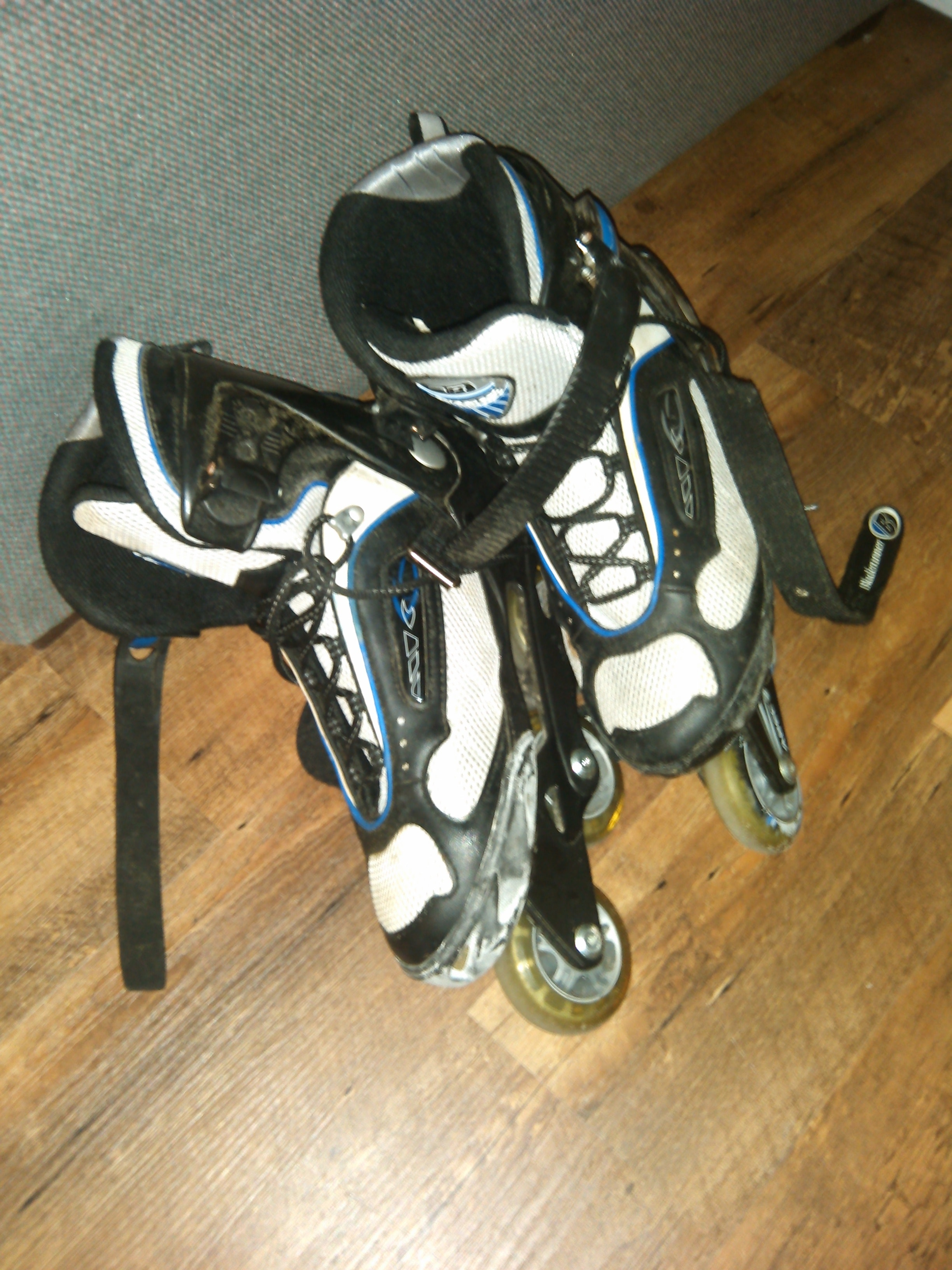 Roller Skate Shoes With Two Wheels