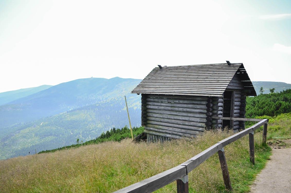 champ, cottage, montagnes