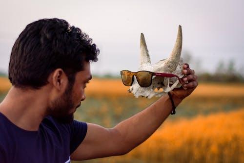 Immagine gratuita di cranio, fotografia di ritratto, occhiali di protezione