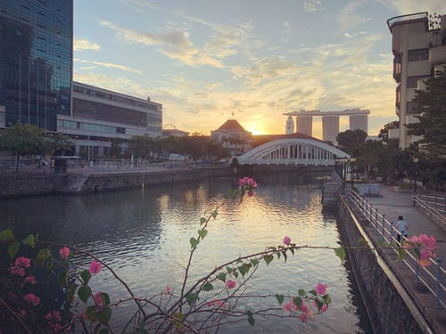 Free stock photo of city, Elgin bridge, landscape, singapore