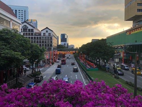 Free stock photo of chinatown, landsape, singapore, sunset