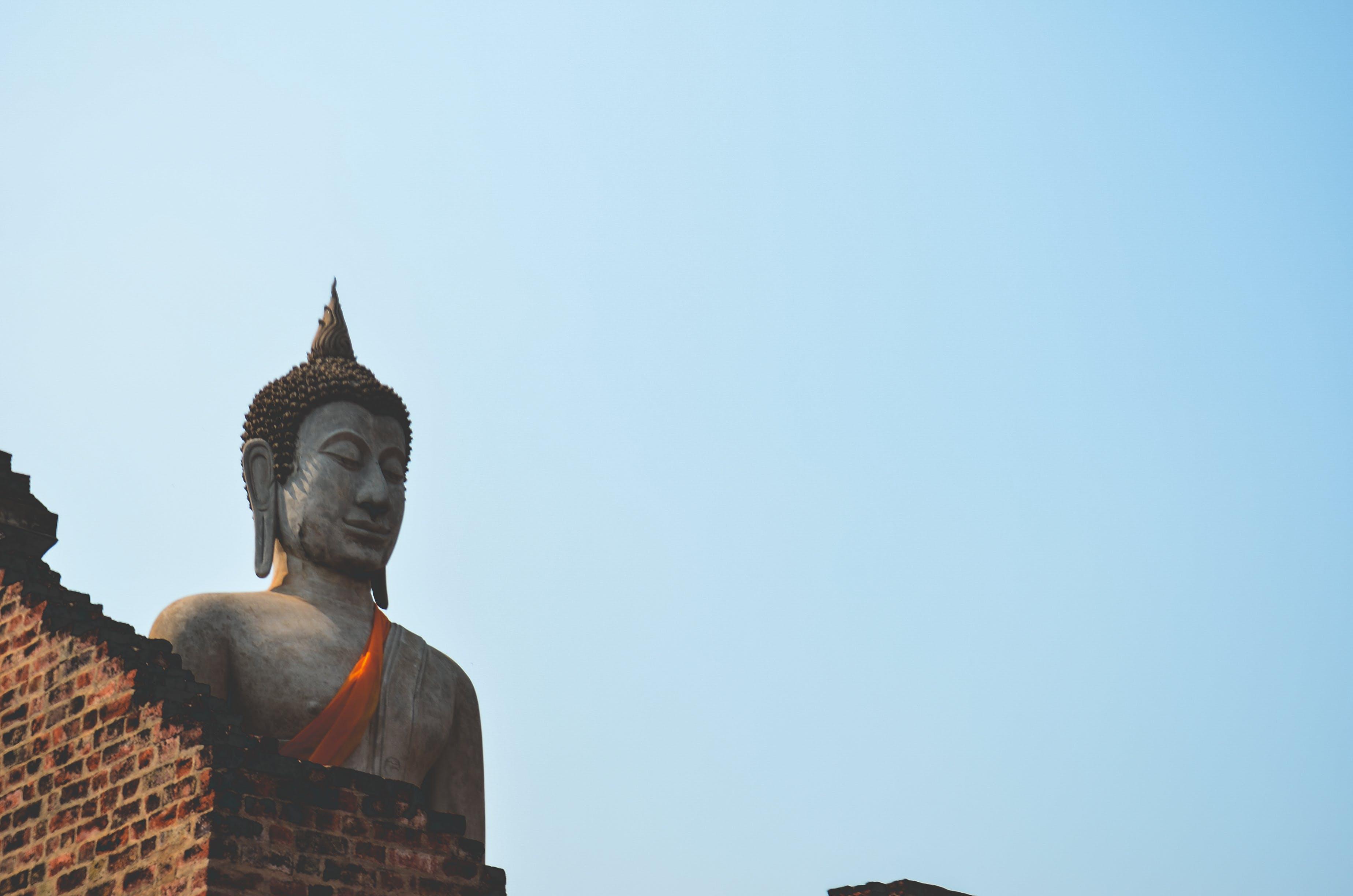 Gratis lagerfoto af berømt, buddha, Buddhisme, dagslys