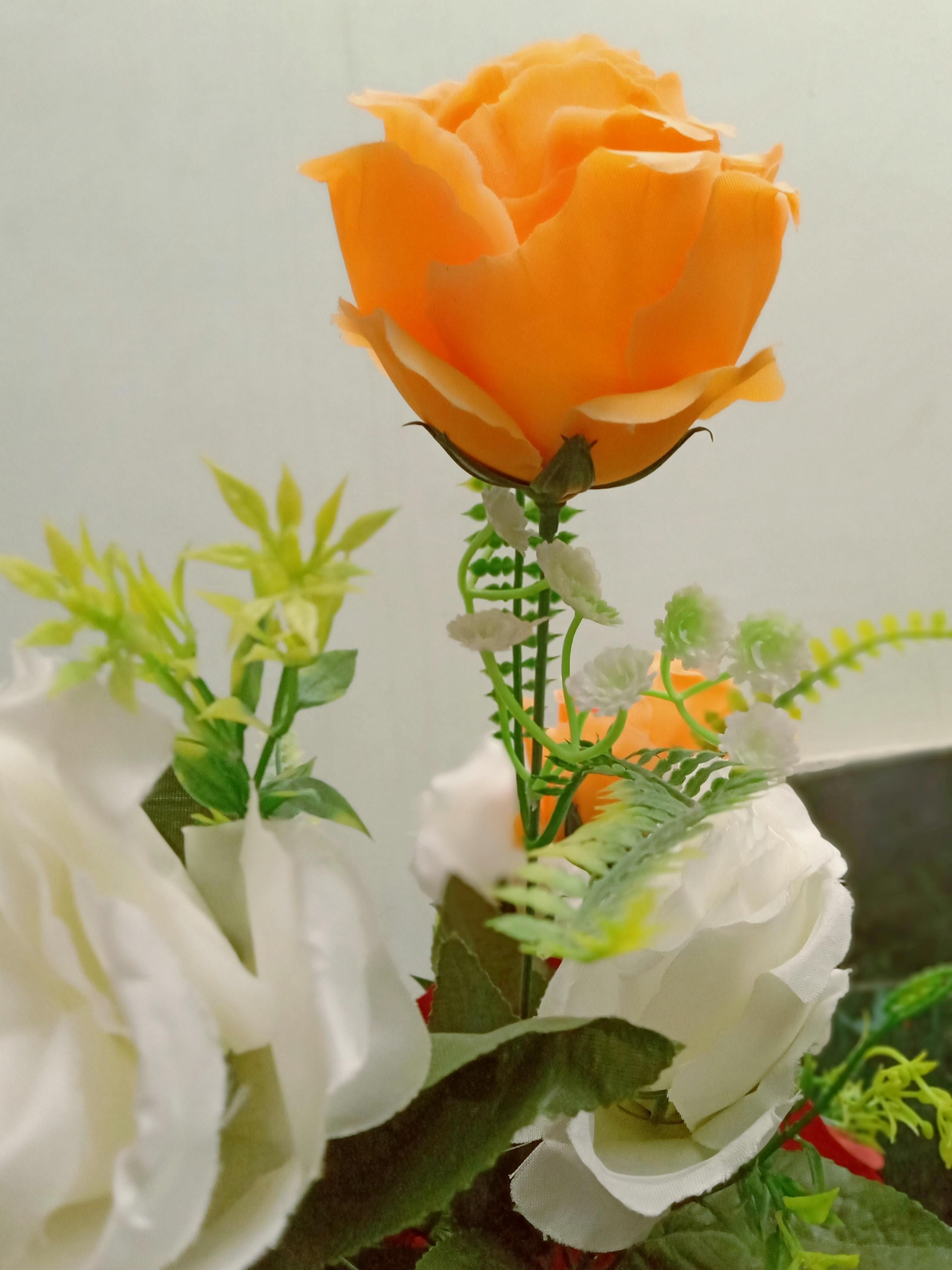 Wallpaper Bunga 4k Gambar Bunga Keren