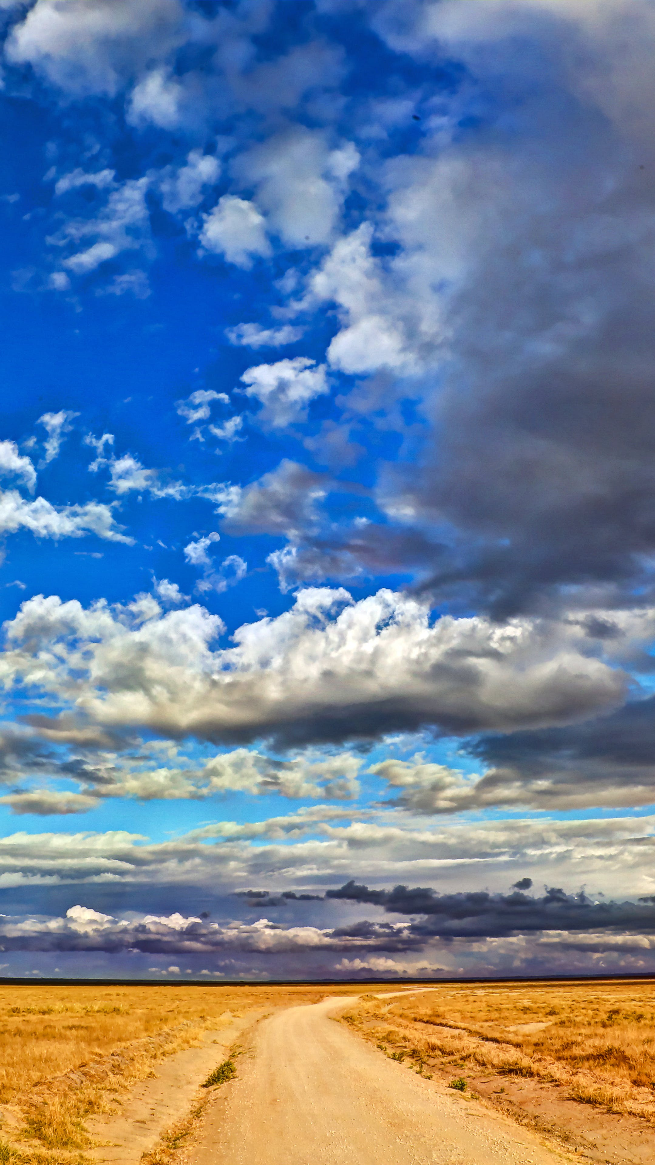 Free stock photo of bright, cloud, cloudscape, cloudy