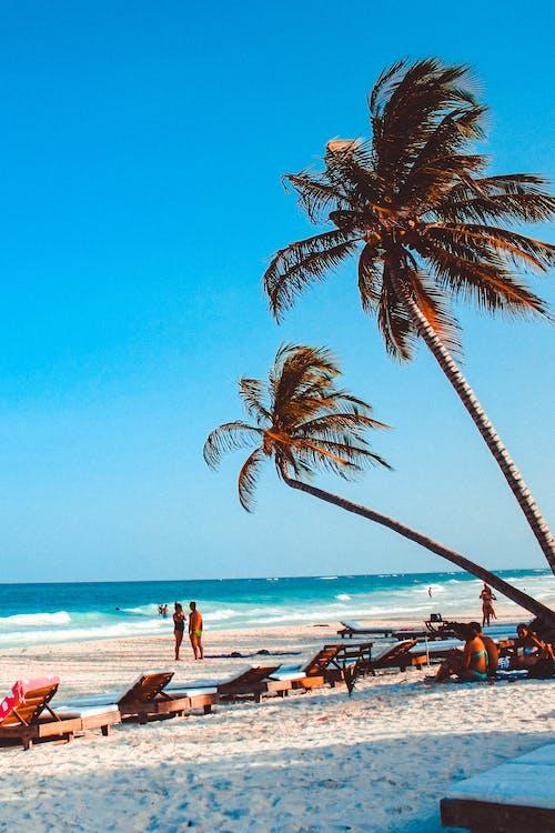 à beira-mar, água, areia