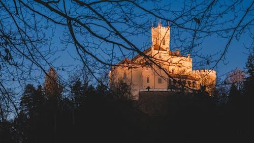 Fotos de stock gratuitas de bosque, castillo, colina
