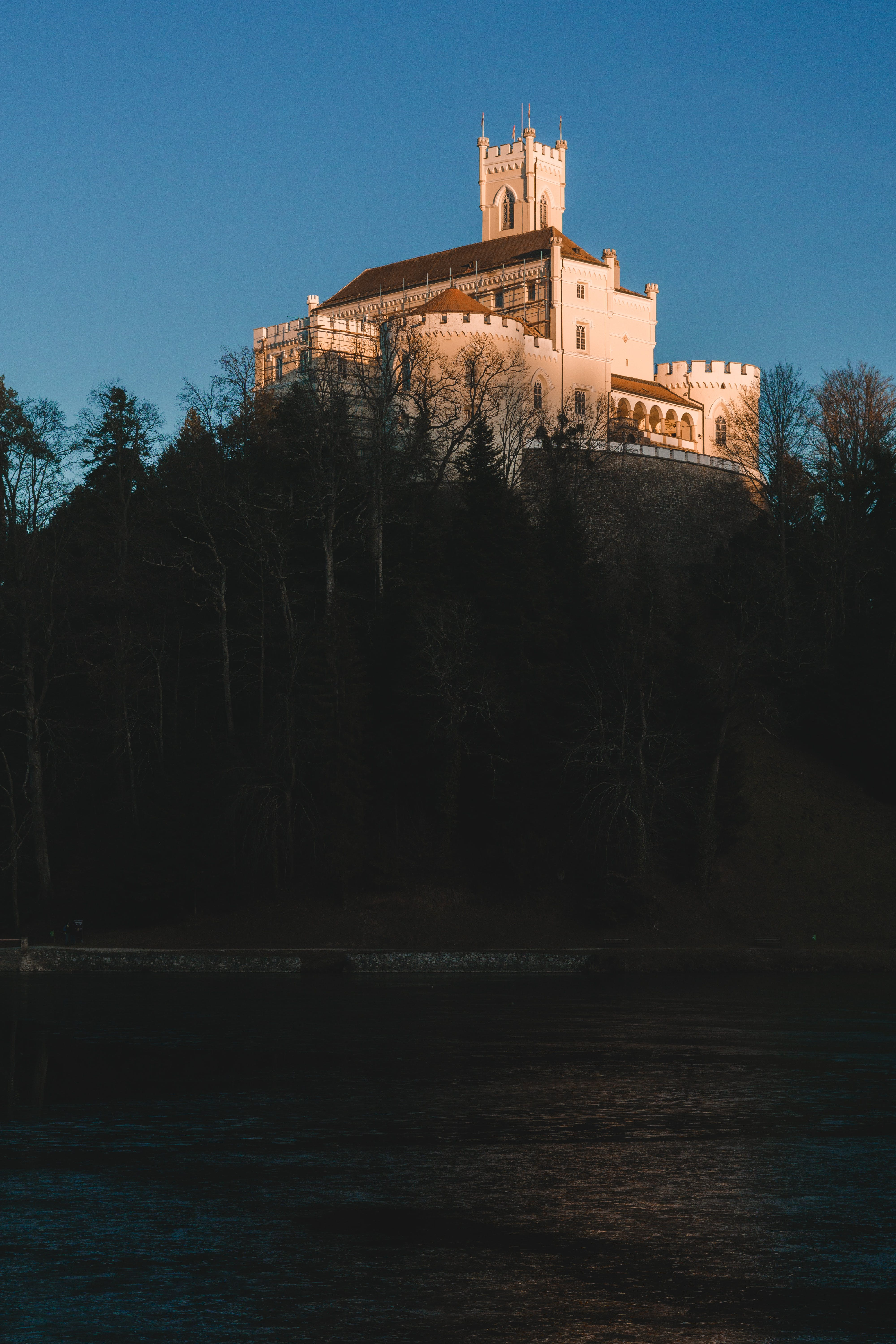 castle, forest, hill