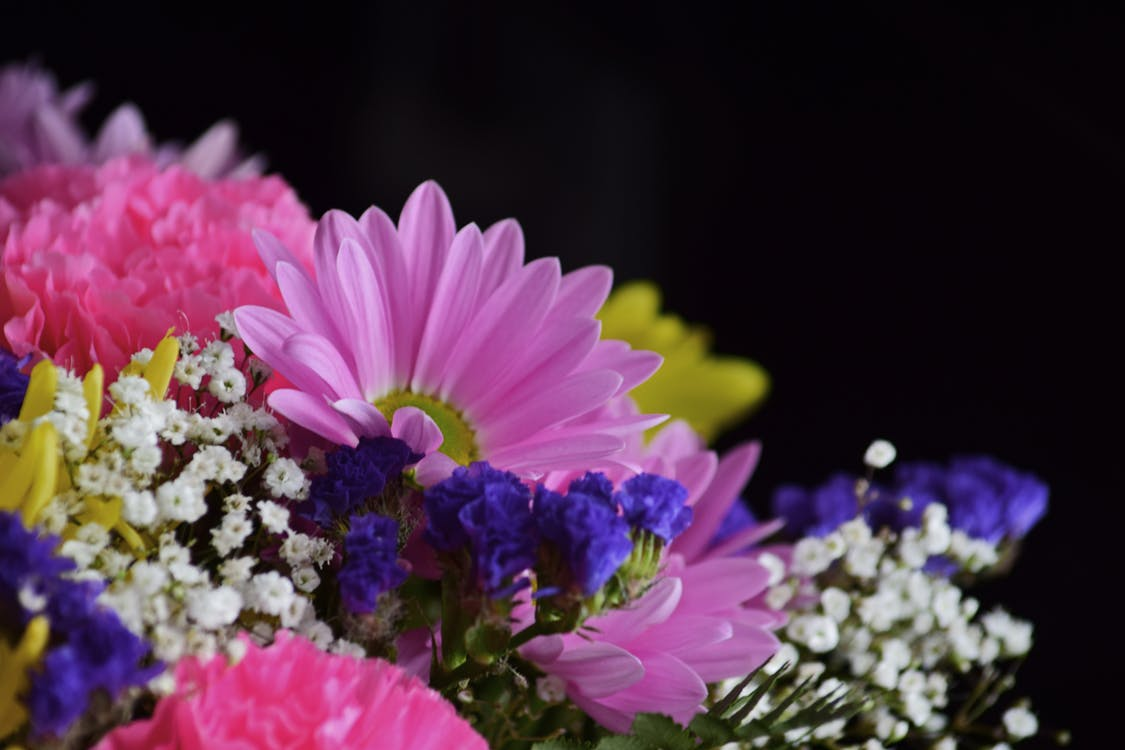 beautiful flowers, bouquet, flower bouquet