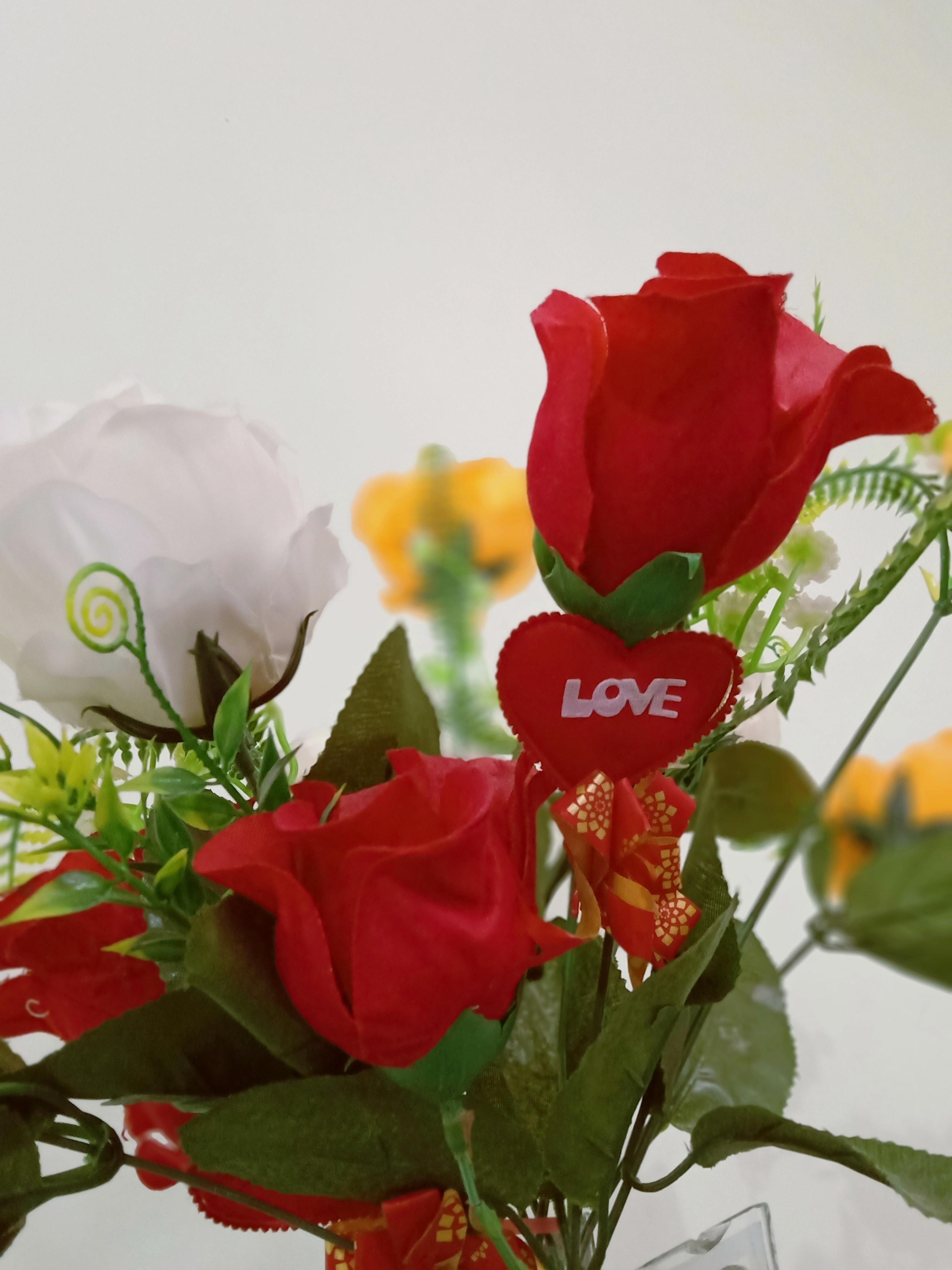 Photo Gratuite De Fleur D Amour Fond D Ecran Fleur