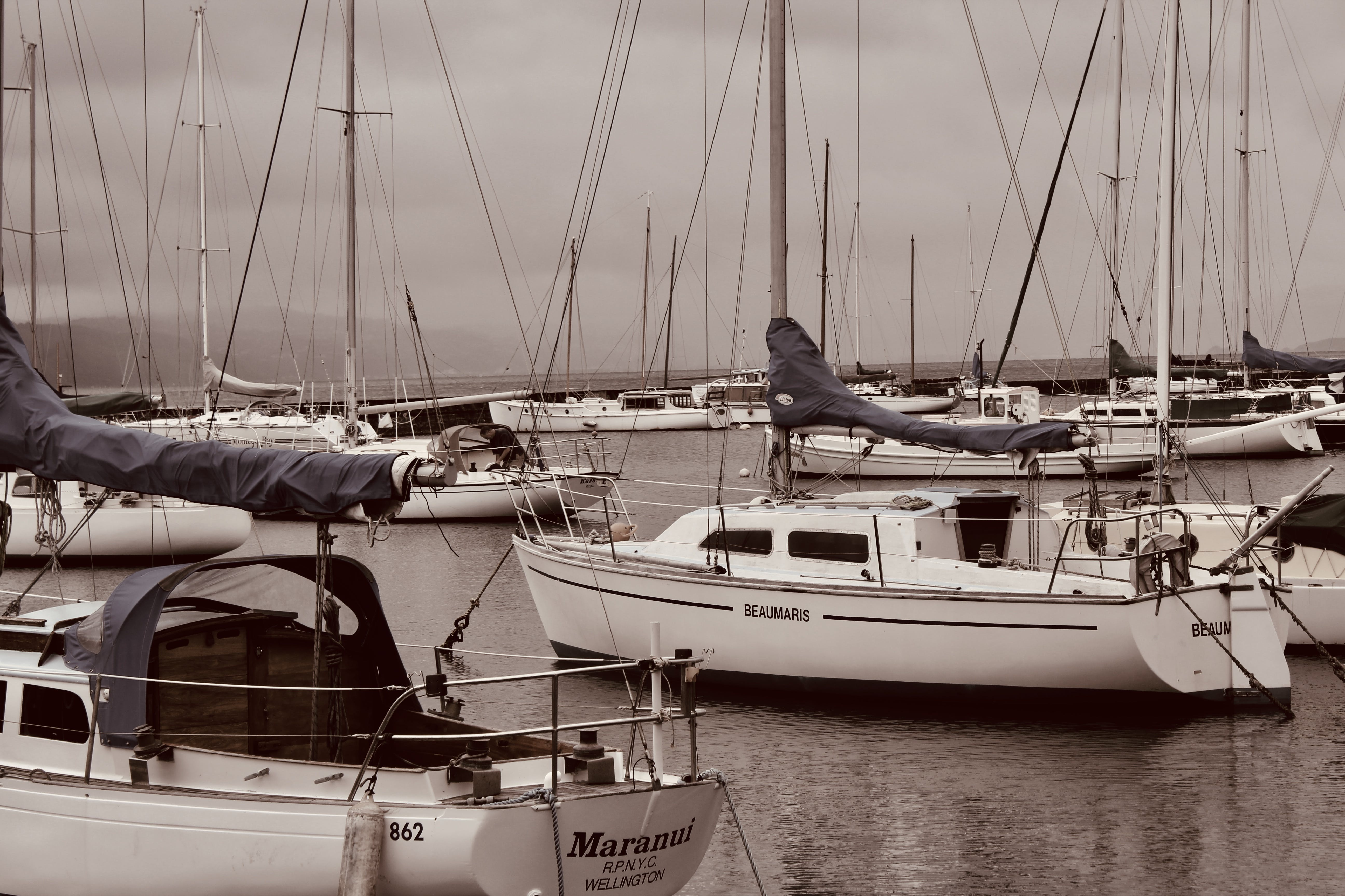 Free stock photo of boats, harbour, hills, masts