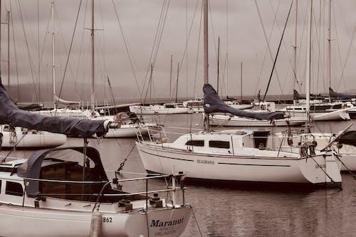 Fotobanka sbezplatnými fotkami na tému člny, more, námorný prístav, sťažne