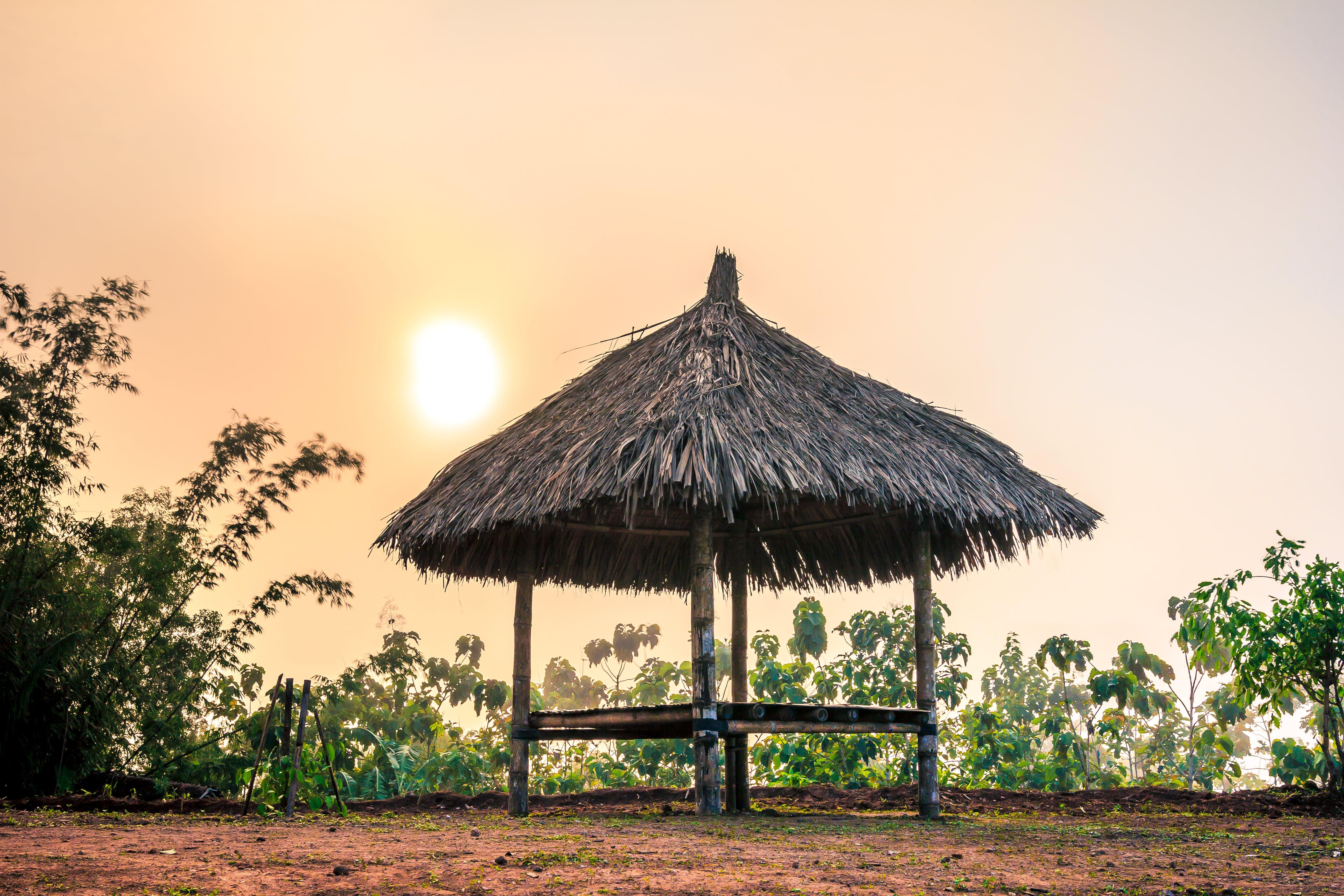 Free stock photo of sunset, beautiful, sunlight, HD wallpaper