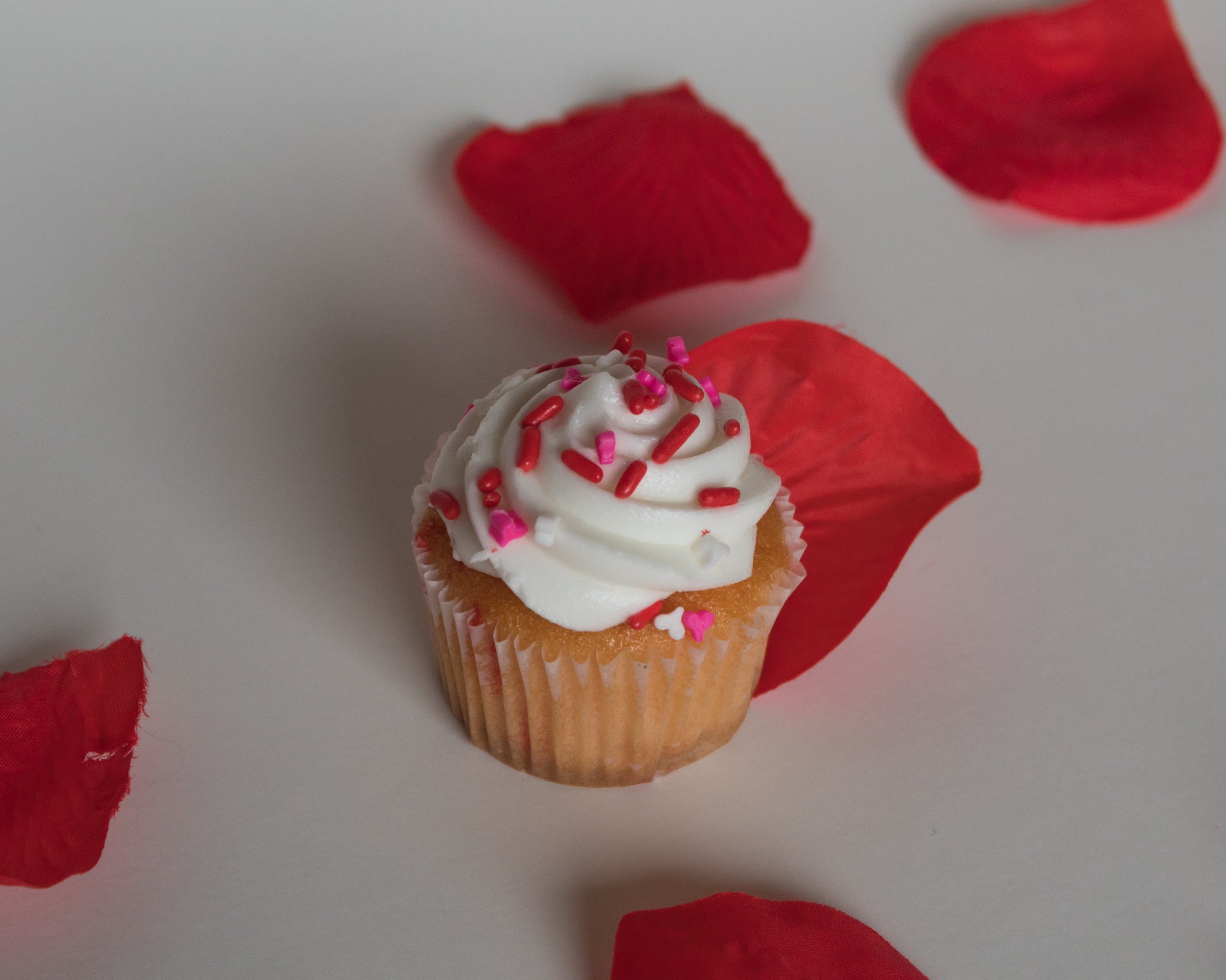 Free stock photo of cupcake, cupcakes, red
