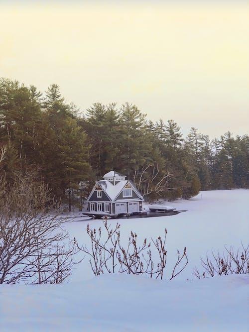 Základová fotografie zdarma na téma krajina, sníh, zima