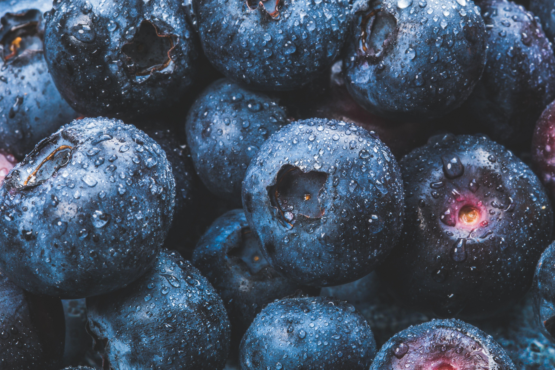 Blackberries in Macro Photography