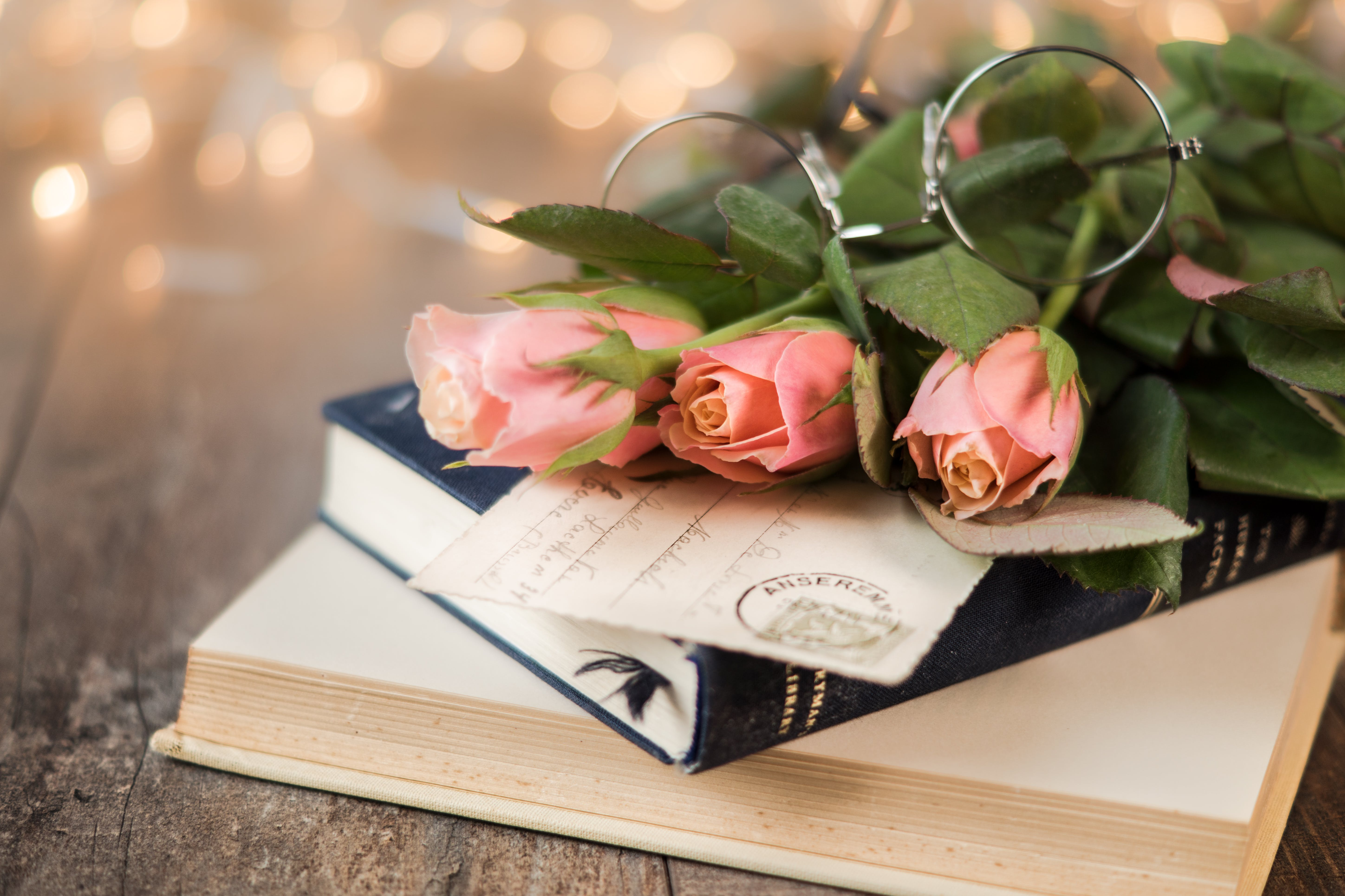 Pink Rose Flowers and Book