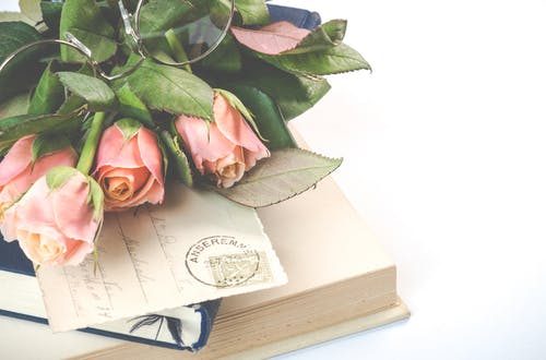 Pink Rose Flowers on Top of Books