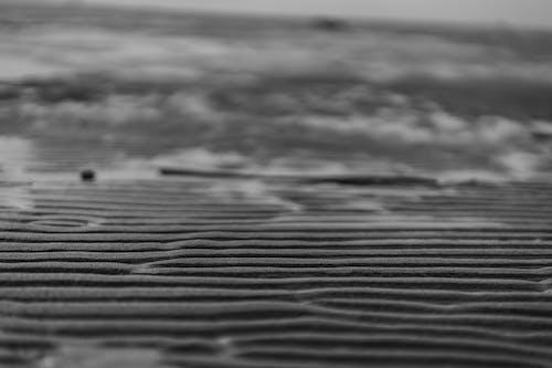 Бесплатное стоковое фото с f1.8, берег, вода, мелкий