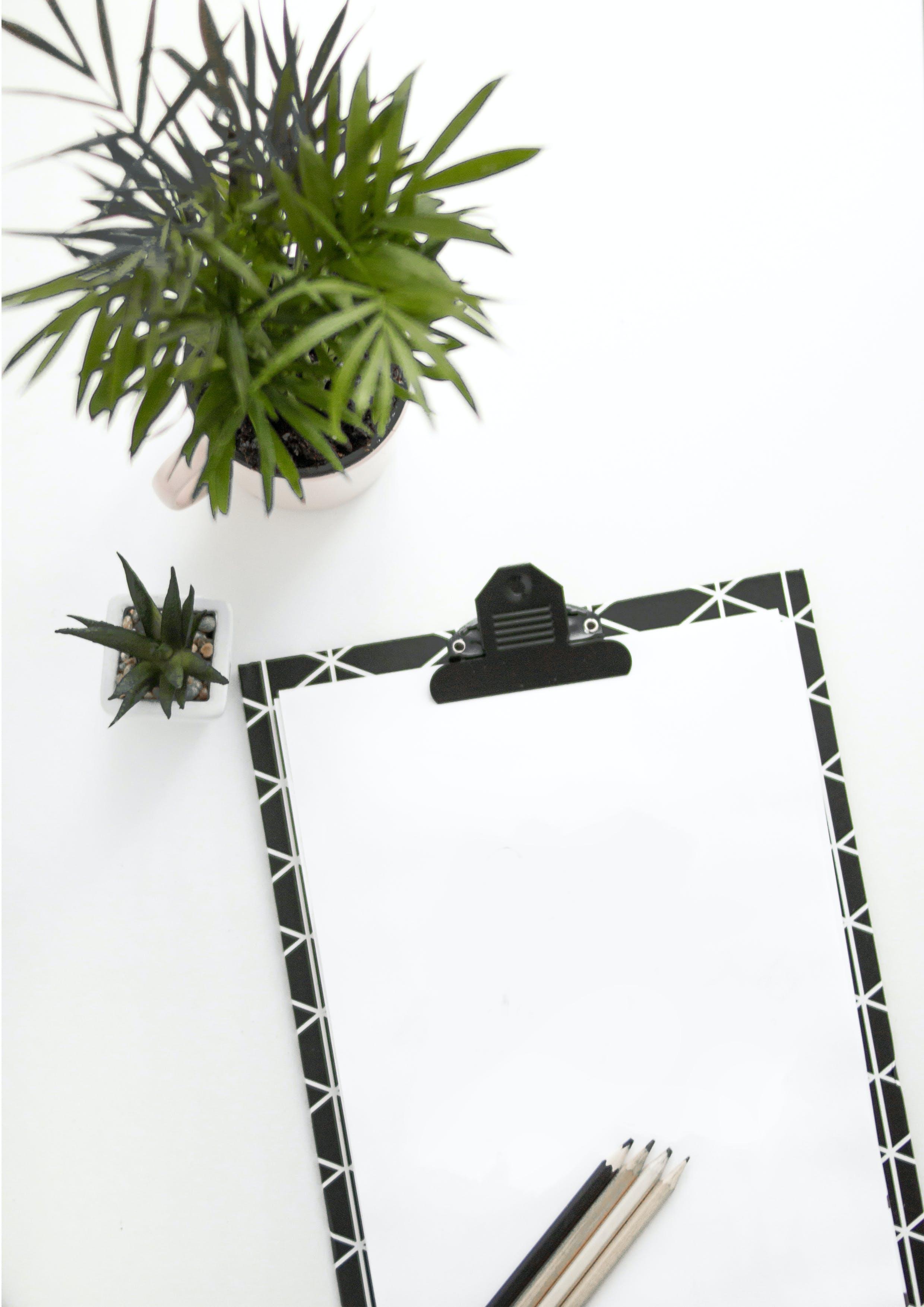 Kostenloses Stock Foto zu bleistifte, design, draußen, leer