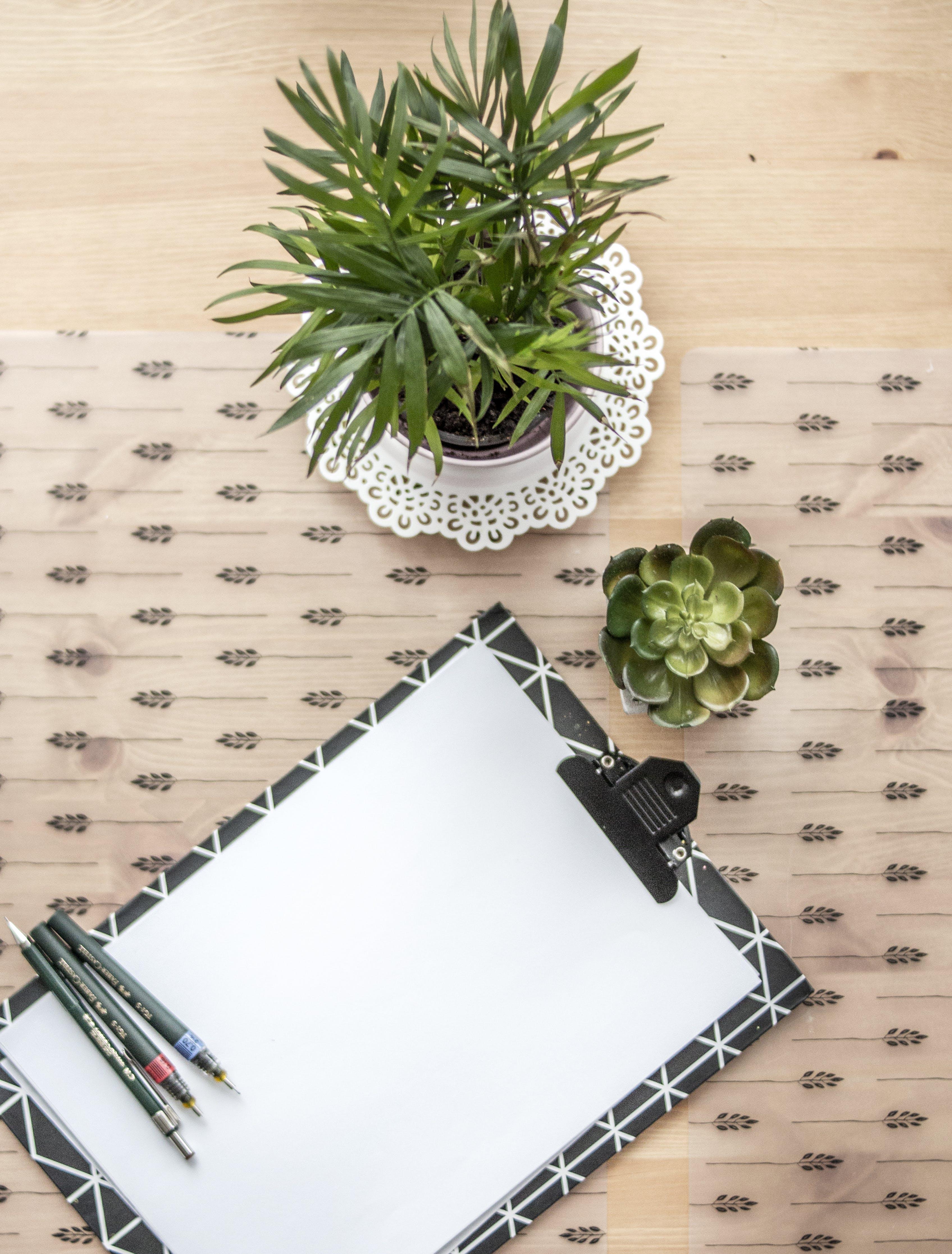 Kostenloses Stock Foto zu leer, papier, stifte, zwischenablage