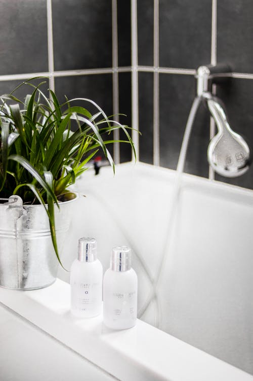 Two White Bottles Beside Potted Plant on Bathtub