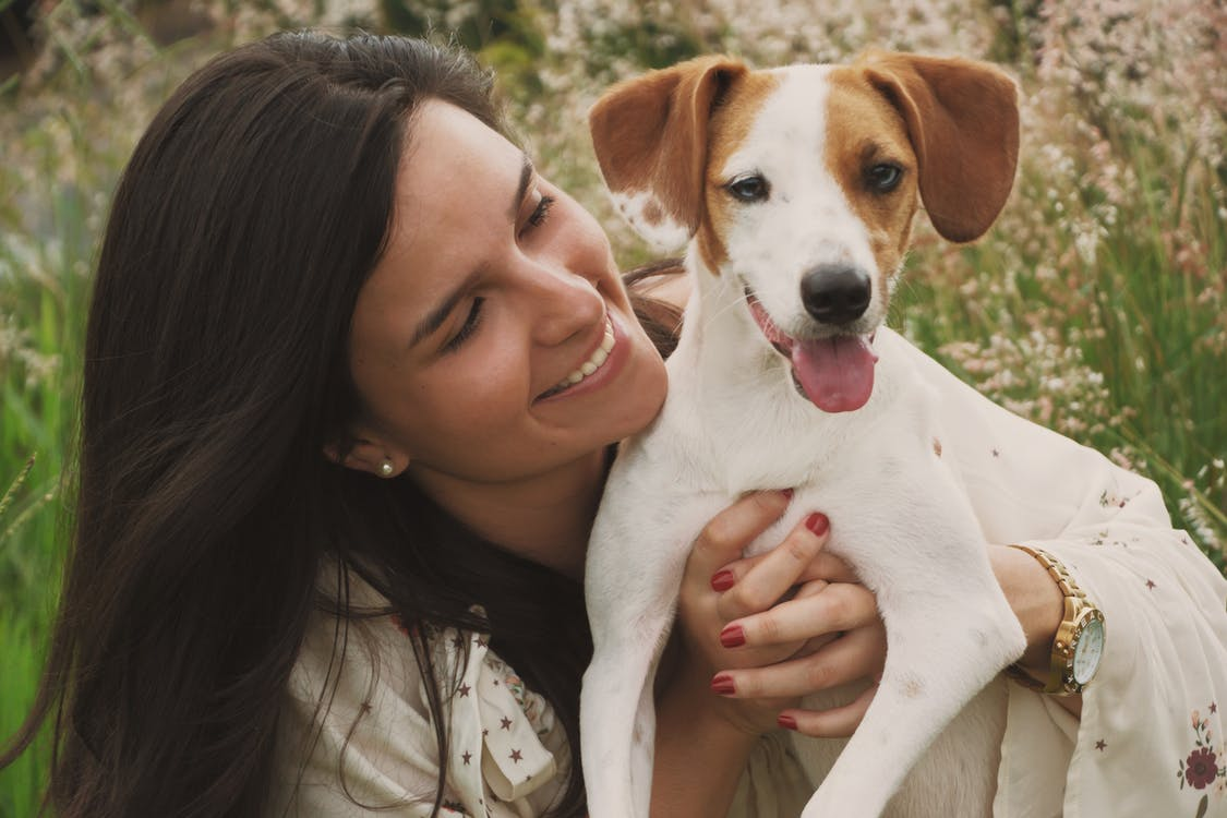 Is Your Dog Fit For Therapy Dog Training?