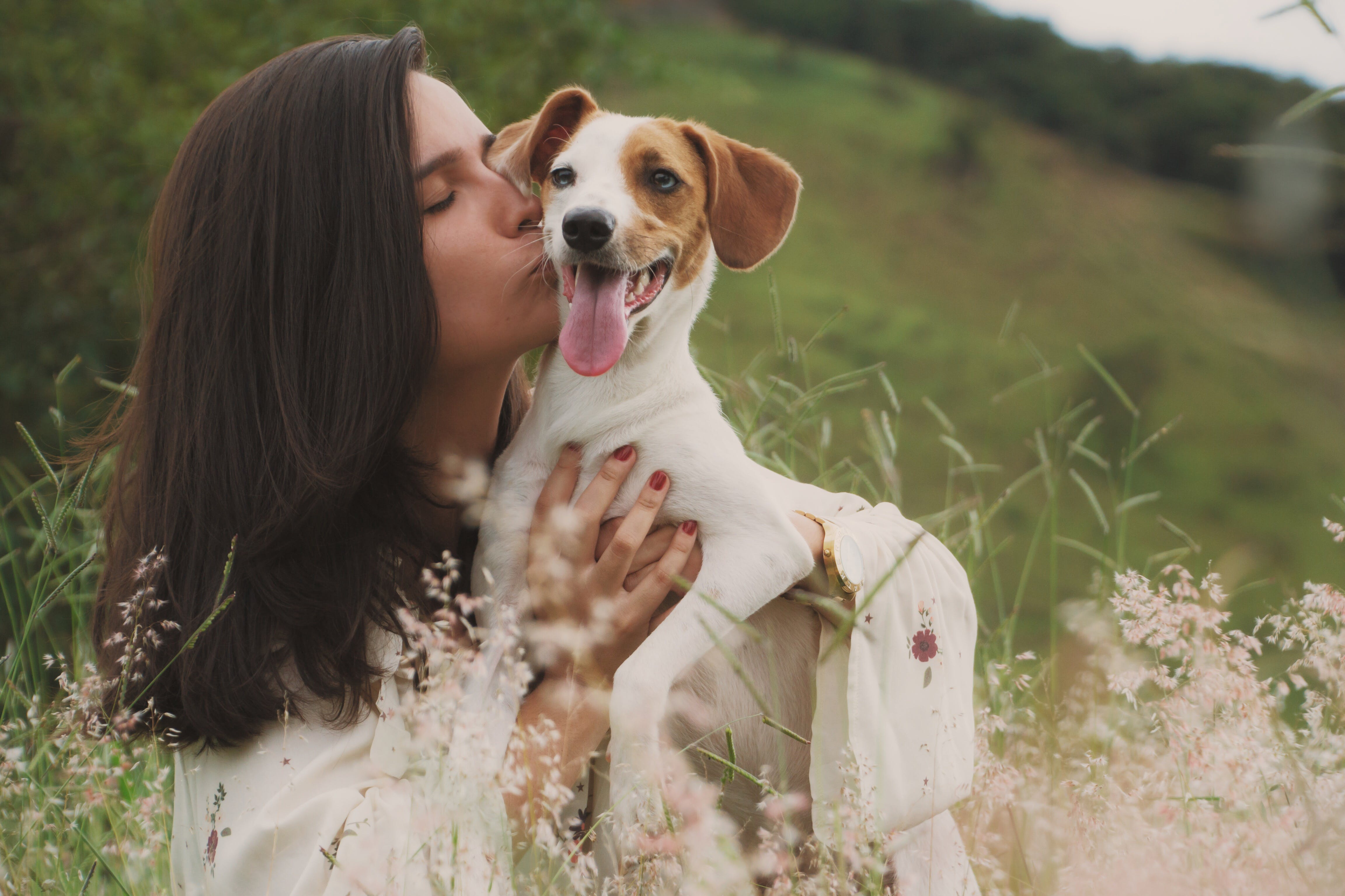 Close-Up Photo of Woman Kissing A Dog