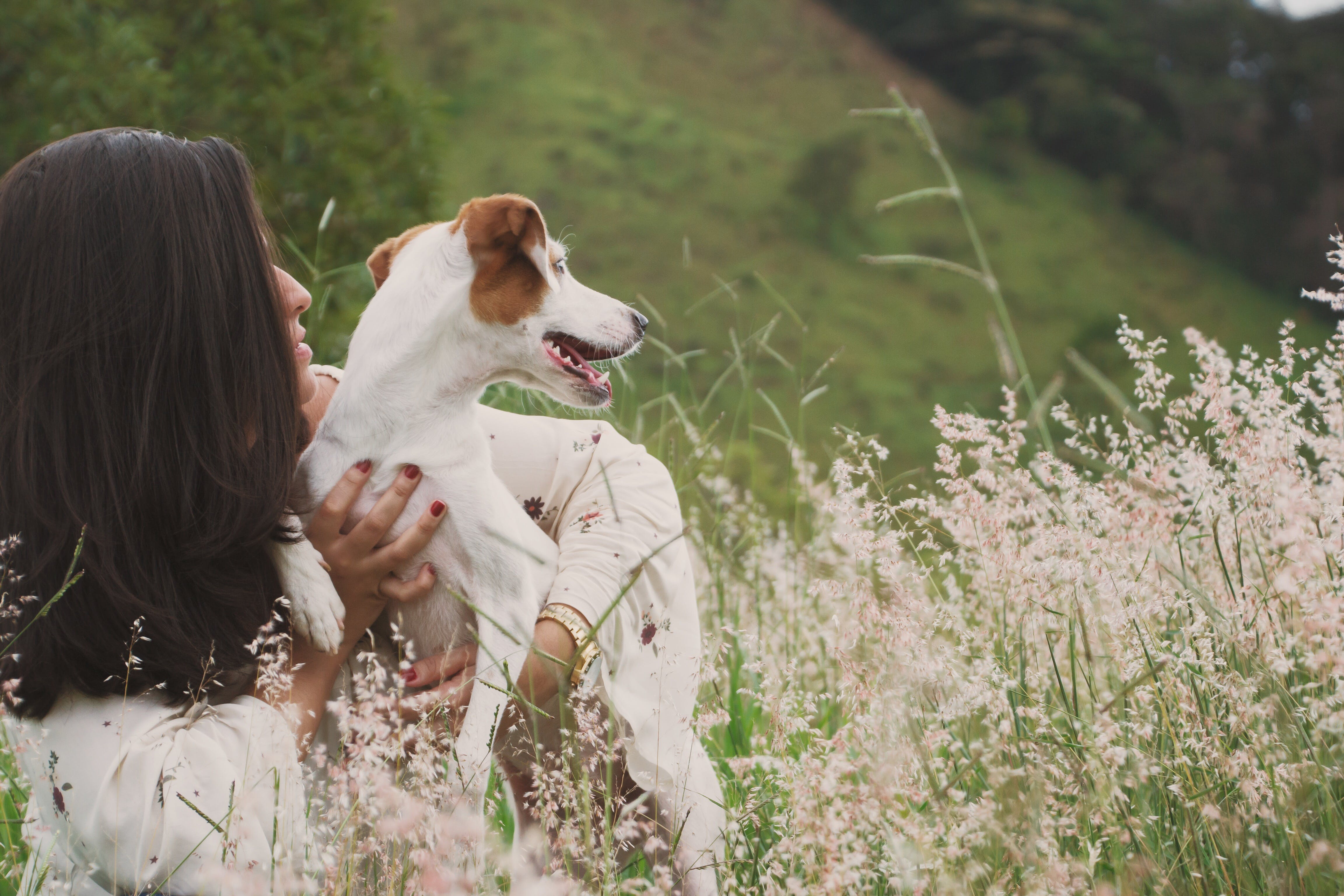 Woman Wearing White Dress Holding White and Brown Dog