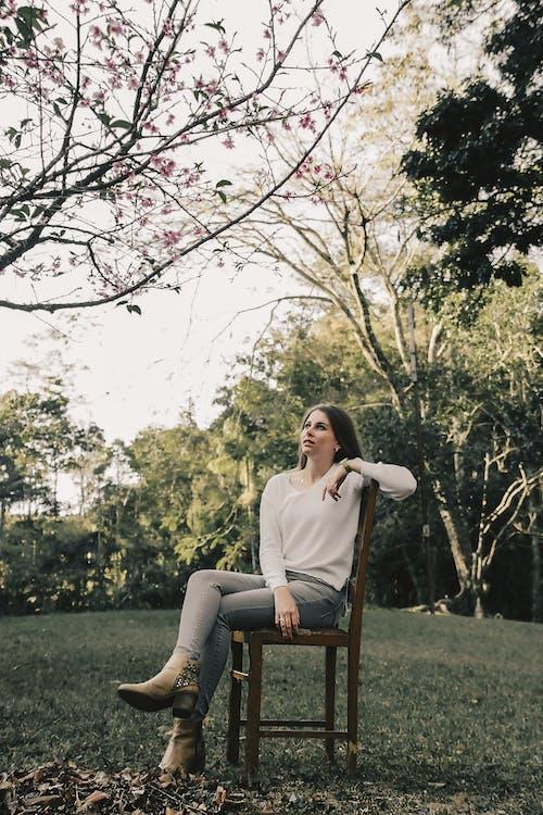 Foto profissional grátis de árvores, beleza, cadeira de madeira, descanso