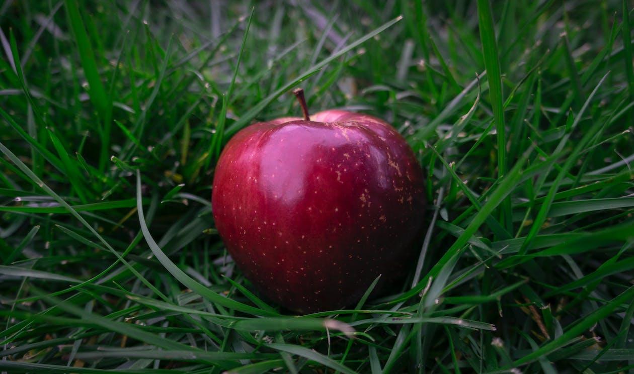 apple, eple, farger