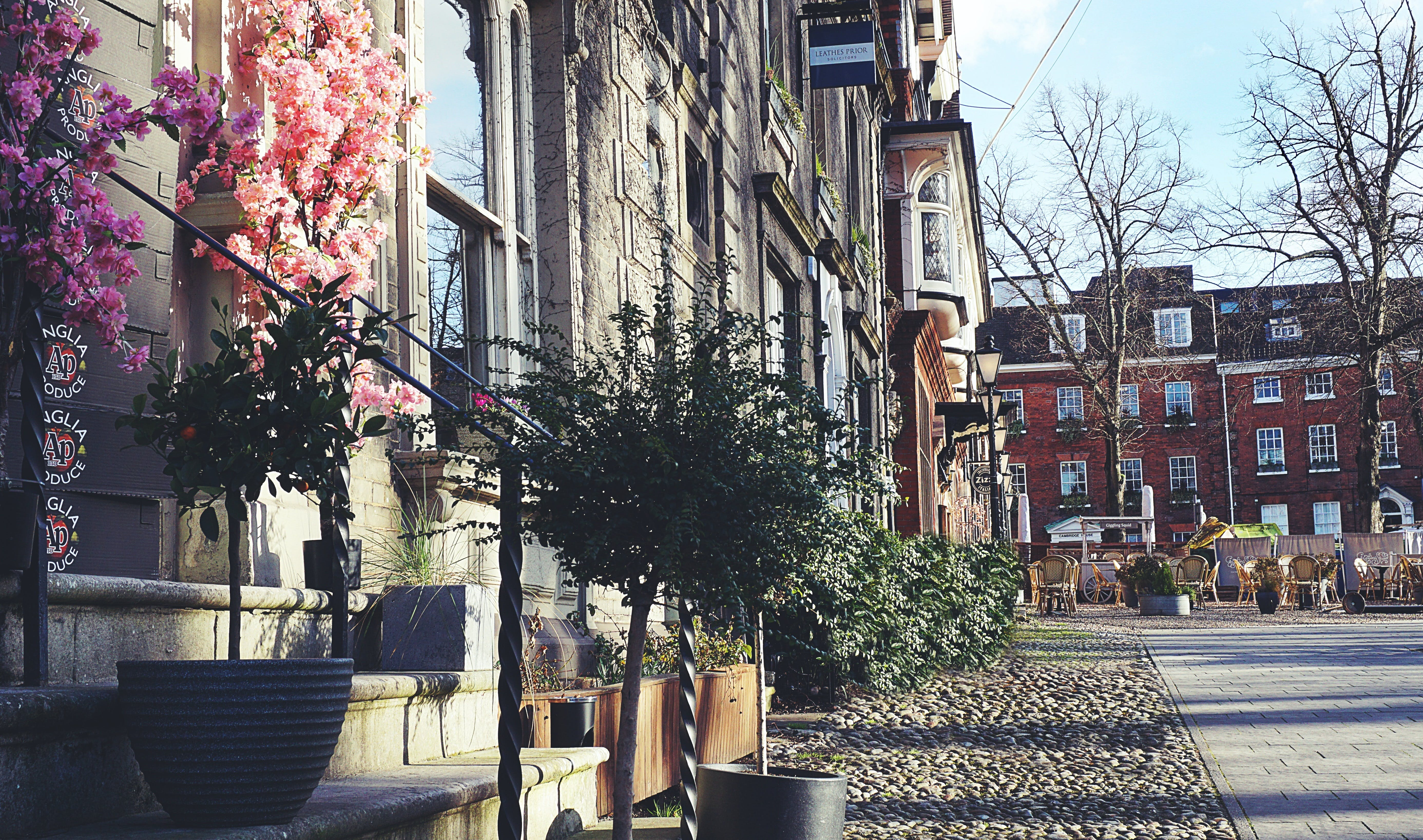 Free stock photo of buildings, city, old city, paved walkway