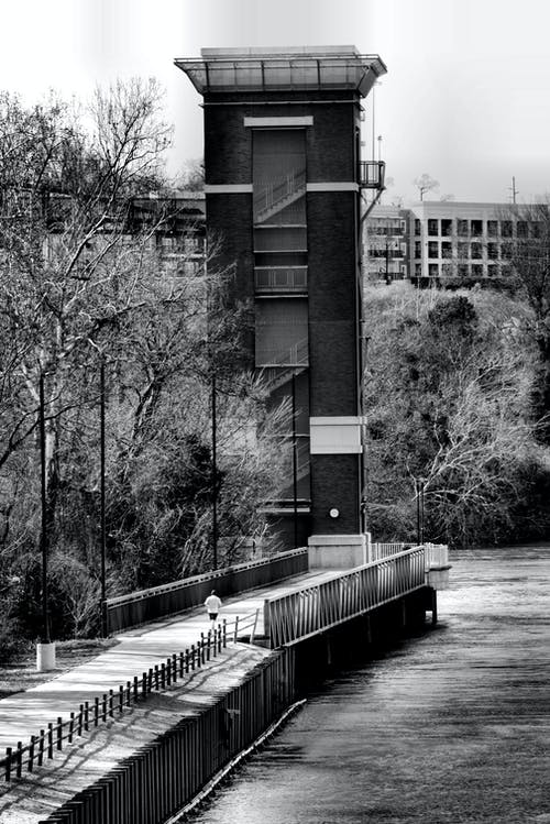 Free stock photo of black and white, lakeside, man