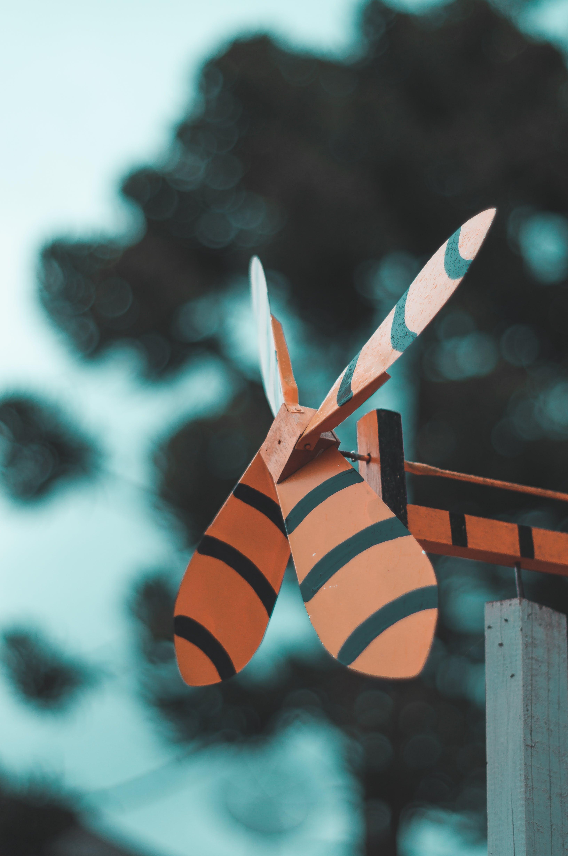 Orange and Black 4-blade Fan